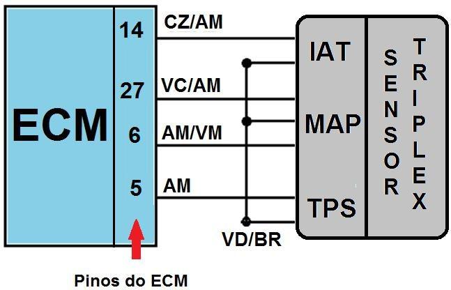 ECM_TRIPLEX