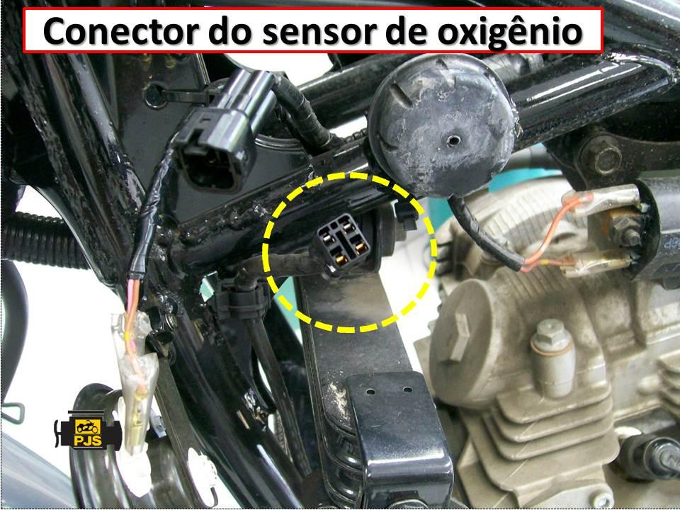 conector do sensor
