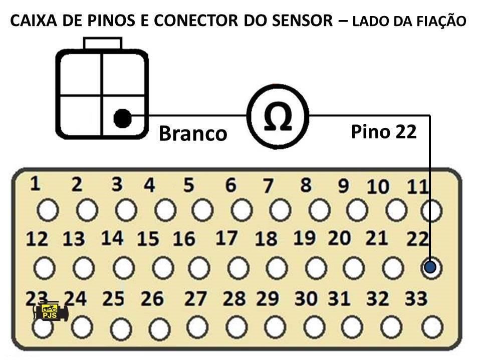 CAIXA DE PINOS4