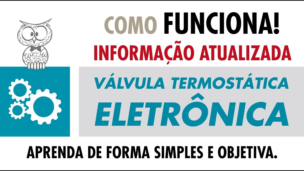 COMO FUNCIONA - Válvula Termostática Eletrônica