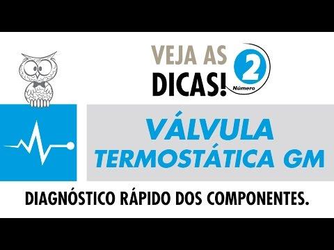 Valvula Termostatica GM